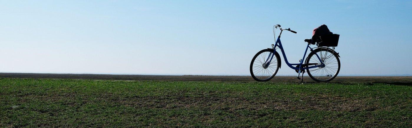 fietsen langs de zuiderzee